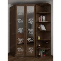 шкаф угловой с пескоструйным зеркалом цвета шимо темный