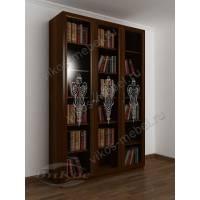 3-створчатый книжный шкаф с пескоструйным зеркалом