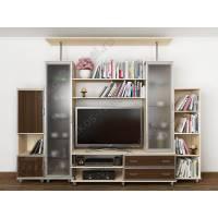 мебельная стенка в современном стиле цвета беленый дуб - венге