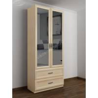 2-дверный шкаф с распашными дверями в прихожую